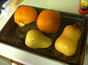 place pumpkins face down on oiled cookie sheet
